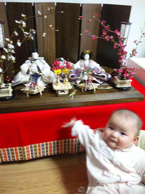 雛人形に手を伸ばした赤ちゃんのスナップ写真です。
